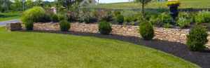 Landscape Maintenance in Columbus