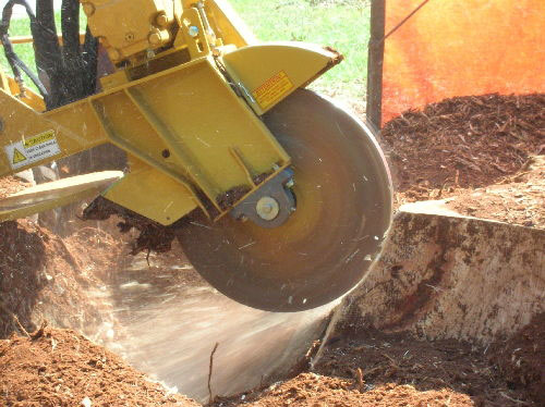 Tree Stump Removal by grinding